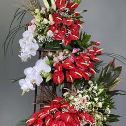 گل عروس هلندی کد 10115