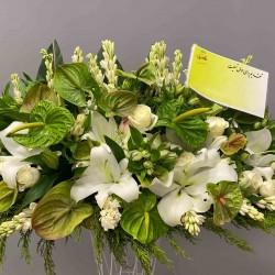 گل رو میزی کد 10144